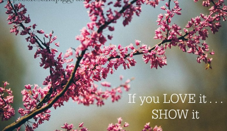 If You Love It, Show It