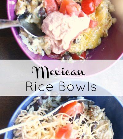 rice bowls 7