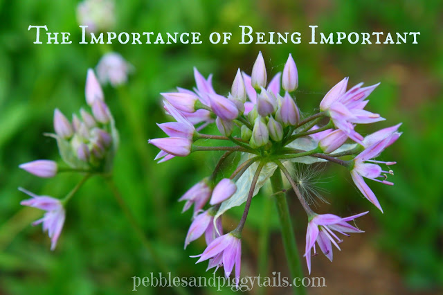 The Importance of Being Important