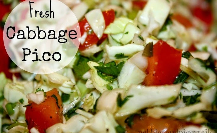 Fresh Cabbage Pico De Gallo