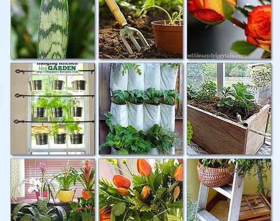 30 Indoor Gardening Tips