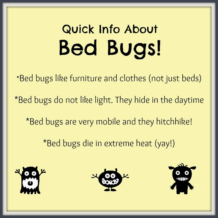 10 Tips For Preventing Bed Bugs Making Life Blissful