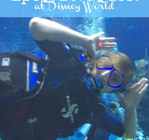 We Tried Disney's DiveQuest at Epcot