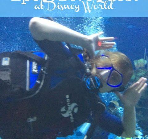 Disney DiveQuest.1