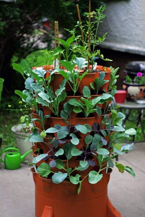 garden-tower