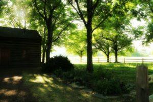 Whitmer Farm in Fayette New York