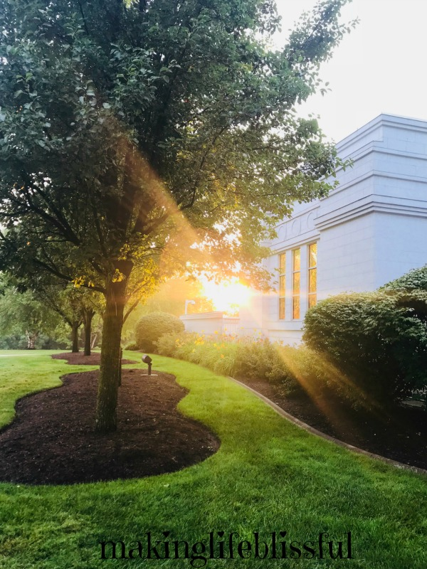 Palmyra Temple Photo by Lisa Jorgensen