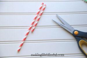 paper-straw-craft